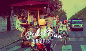 Want to know more about Beer Biking?