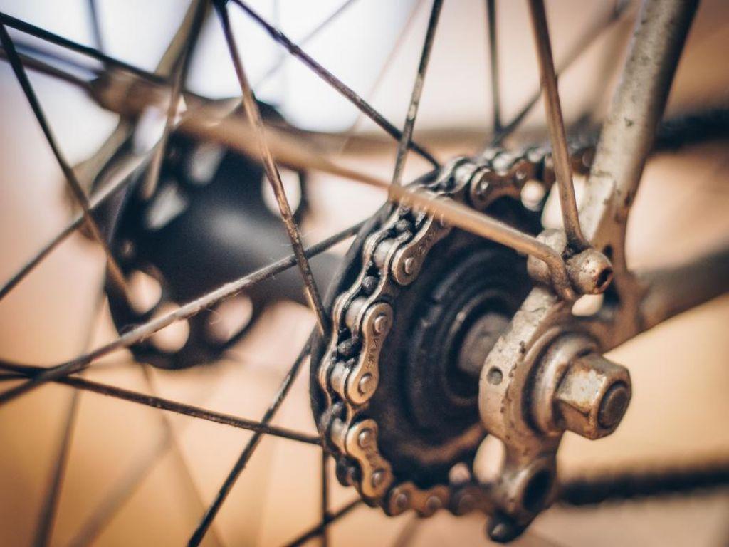 A Brief History of Biking