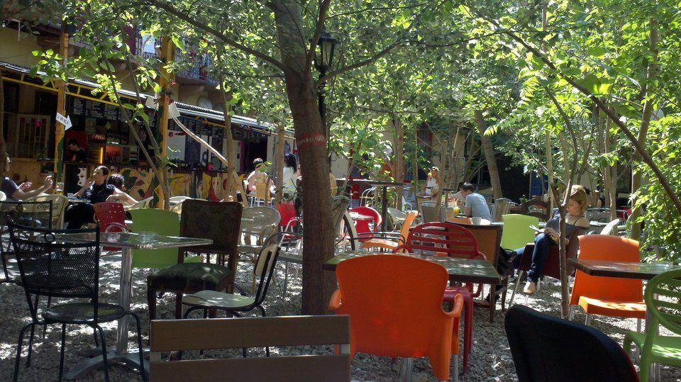 Grandio Jungle Bar & Grill